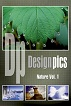 Nature Vol 1 (DPI-DP-N1-06)