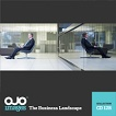 The Business Landscape (OJO-CD128)
