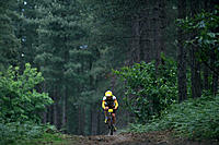 Mountain biker through the forest