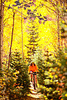 Woman riding mountain bike through fall colors in forest