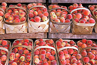 Baskets of peaches. Farmers´ market