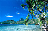 Bora Bora shoreline and lagoon