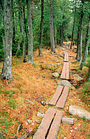 Jordan Pond Trail. Acadia NP. Maine. USA