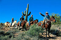 Trail ride through Sonoran Desert. Arizona. USA
