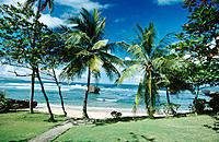 Bathsheba. Barbados. West Indies