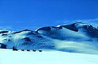 Dogsled ,  Yukon ,  Canada ,