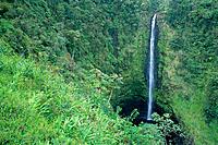 Hawaii BigIsle, Akaka Falls, view of long thin waterfall, surrounded by lush greenery