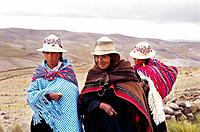Coya woman goint to the village fair. Bolivia