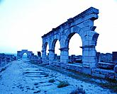 Roman ruins of Volubilis. Morocco