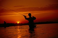 Silhouette of a man fly_fishing, Massachusetts, USA