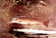 Title Unknown (Fish)Winslow Homer (1836-1910 American)