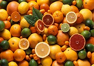 Citrus Fruit Still Life