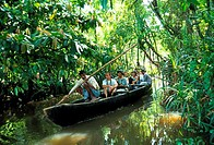 Tourists in a boat, Kerala, India