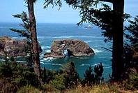 Samuel H. Boardman State ParkOregonUSA