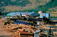 Lumber mill log storage beside Adams Lake. British Columbia. Canada