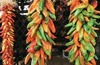 Peppers drying. Taos. New Mexico. USA