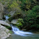 Purón River. Valderejo Natural Park. Álava. Spain