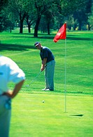 Golfer watches his putt