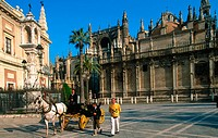 Cathedral and Giralda in Seville. Andalusia. Spain