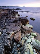 Rocky shore of the eastcoast of Sweden. Skane