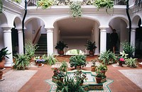 Interior of the patio of a rest home in Benalmadena. Malaga