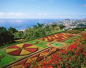 Botanical Garden in Funchal City. Madeira Island. Portugal