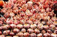 Spain, Catalunya, Barcelona. Garlic.