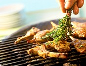 Lamb chops with thyme on the barbecue (1)