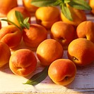 Apricots (1)