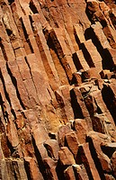 Rock patterns. Dhinodhar hill. Kuchh. Gujarat. India