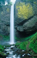 Latourell Falls. Guy Talbot State Park. Columbia River Gorge. Oregon. USA