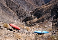 Donkeys carry kayaks, Colca Canyon, north of Arequipa, Peru