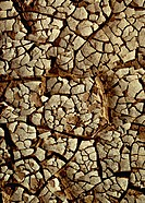 Cracked soil, close-up, full frame