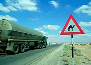 Jordan, tanker on road next to camel crossing sign
