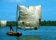 India, person on raft with patchwork sail