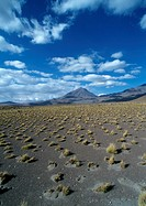Chile, arid landscape with mountains in distance