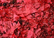 Red paper chips