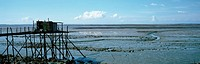 France, seashore at low tide, panoramic view