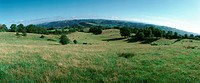 France, grassy hills, panoramic view