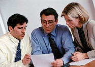 Two businessmen and a businesswoman examining document