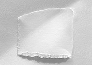 Piece of white paper with torn edges, close-up, white background (thumbnail)