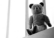 Teddy bear, low angle view, b&w