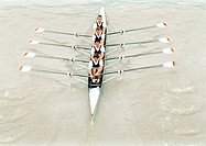 Four men rowing crew in boat, high angle view