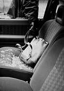 Thief stealing bag from car, close-up, b&w