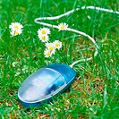 Computer mouse on grass next to flowers