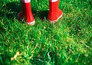 Rubber boots on grass