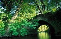 Stone bridge and creek River Hunte. Lower Saxony. Germany