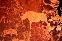 Petroglyphs, Twyfontein, Namibia