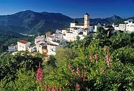 Algatocin, Andalucia, Spain