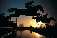 Three Horses Jumping Over a Fence in a Steeplechase Race